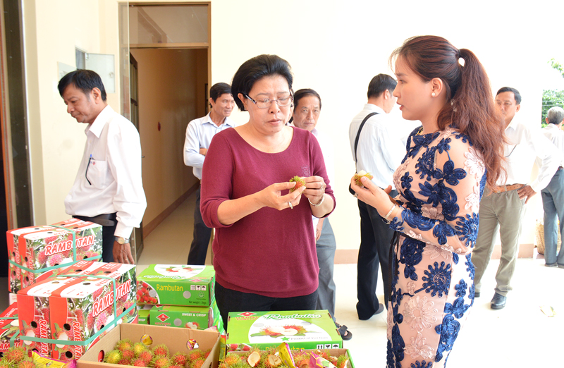 Bà Phan Thị Thu Sương gặp gỡ doanh nghiệp thu mua trái cây và xuất khẩu tại hội thảo. Ảnh: Cẩm Trúc
