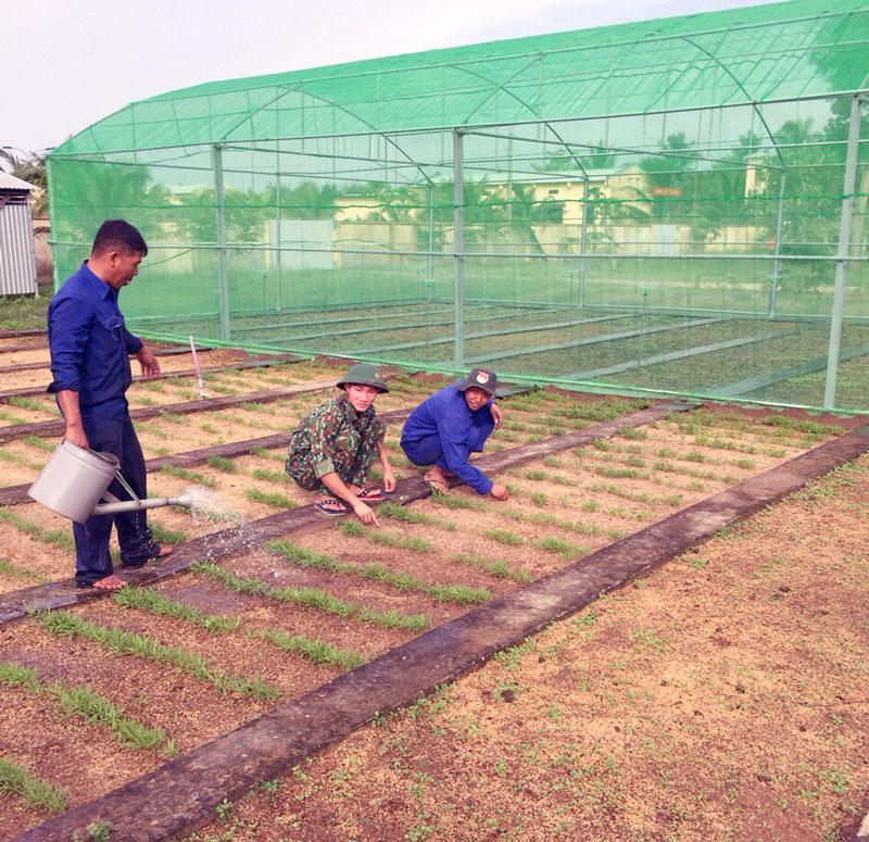 Cán bộ, chiến sĩ Đại đội Kho chăm sóc vườn rau của đơn vị. Ảnh: Đặng Thạch