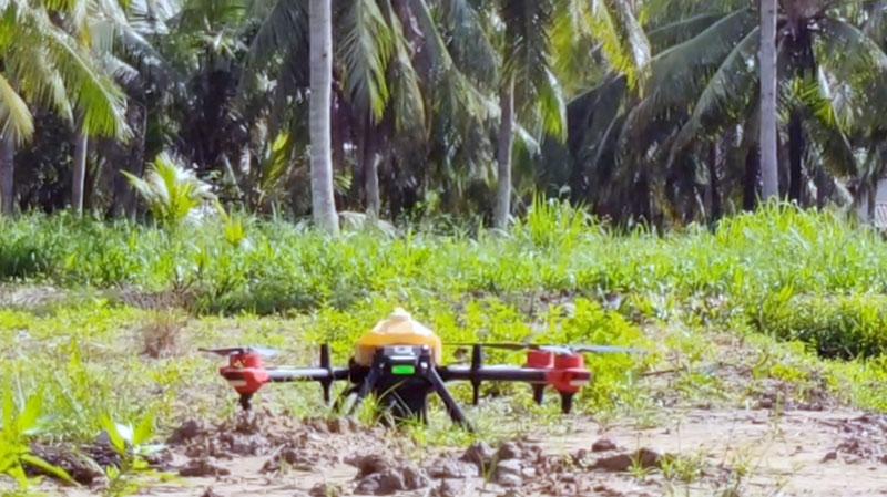 Phương tiện bay mini điều khiển từ xa phun xịt thuốc. Ảnh: C.Trúc