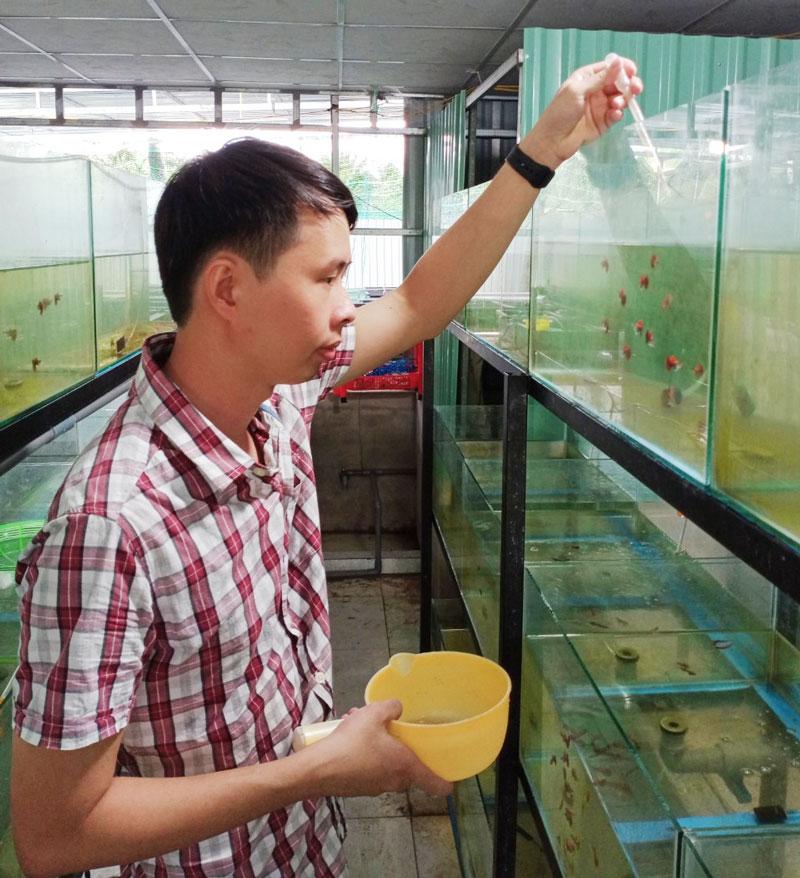 Nguyễn Thanh Huyền bên các bể cá cảnh.