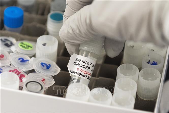 Vaccine ngừa COVID-19 được phát triển bởi công ty Novavax tại Gaithersburg, bang Maryland, Mỹ ngày 20-3-2020. Ảnh: AFP/TTXVN