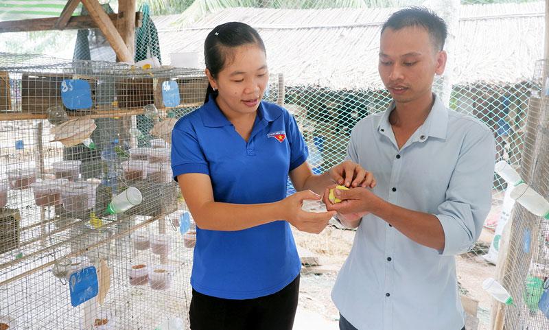 Tham quan mô hình nuôi chim yến phụng của anh Võ Thanh Đoàn.