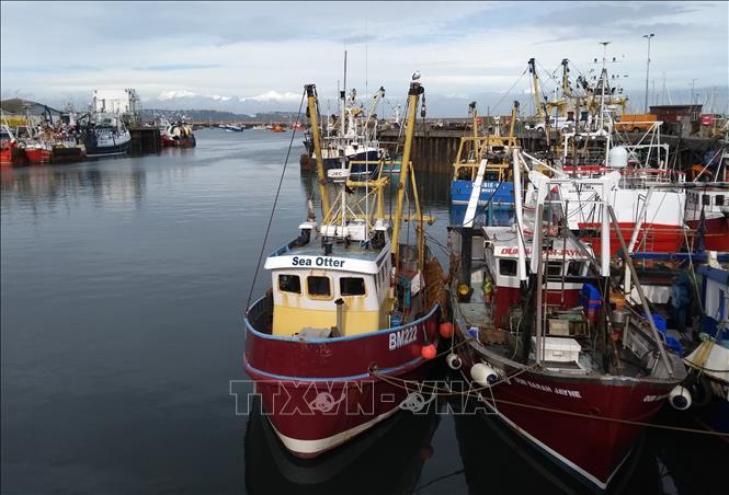 Tàu đánh cá neo tại cảng ở thị trấn Brixham, bờ biển phía Nam nước Anh. Ảnh minh họa: AFP/TTXVN