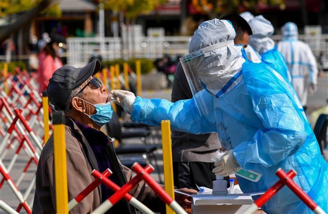 Nhân viên y tế lấy mẫu xét nghiệm COVID-19 tại Thanh Đảo, tỉnh Sơn Đông, Trung Quốc, ngày 12-10-2020. Ảnh: AFP/TTXVN