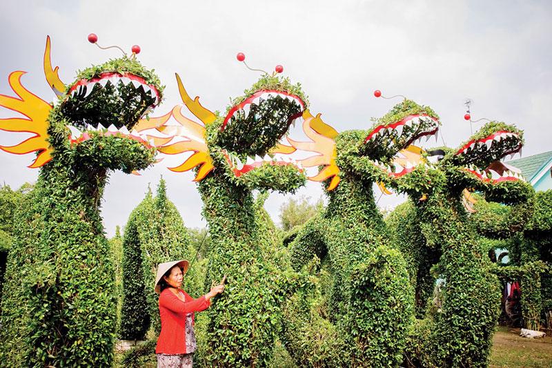 Làm kiểng thú ở Vĩnh Thành (Chợ Lách).  Ảnh: Nguyễn Hải