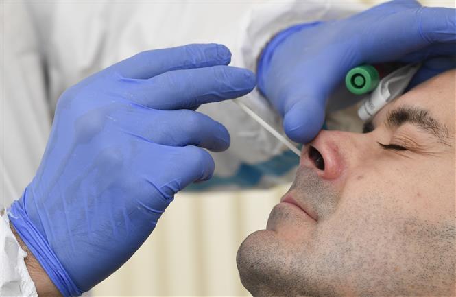 Nhân viên y tế lấy mẫu xét nghiệm COVID-19 tại Stuttgart, Đức, ngày 13-10-2020. Ảnh: AFP/TTXVN