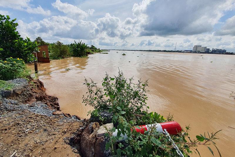 Một đoạn đê bao cồn Phú Đa, xã Vĩnh Bình, huyện Chợ Lách bị sạt lở. Ảnh: Thanh Đồng