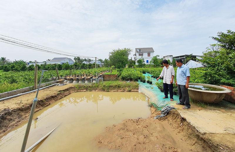 Nhà vườn Chợ Lách đang khẩn trương thi công các công trình trữ nước ngọt để tưới hoa kiểng trước mùa khô 2020-2021.
