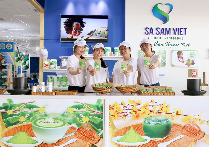 Giới thiệu sản phẩm Sa sâm Việt tại các hội chợ xúc tiến thương mại. Ảnh: CTV