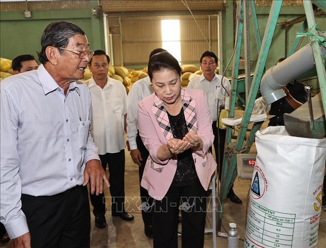 Chủ tịch Quốc hội Nguyễn Thị Kim Ngân tham quan quy trình sản xuất gạo ST25. Ảnh: Trọng Đức/TTXVN