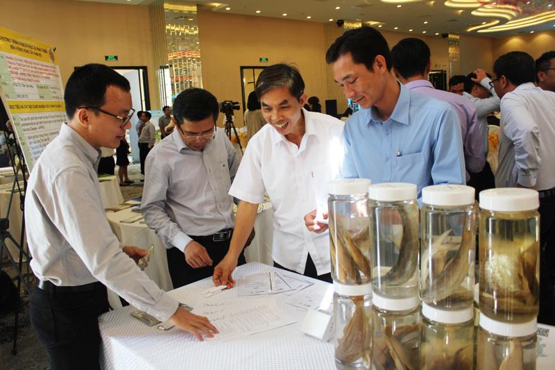 Các đại biểu tham quan các sản phẩm ứng dụng KH&CN.