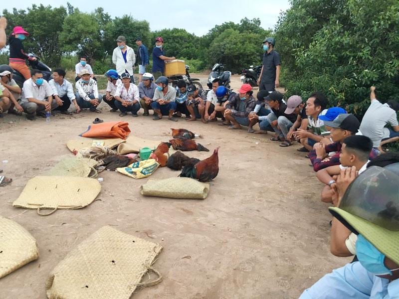 Hiện trường vụ đá gà tại xã Thới Thuận, huyện Bình Đại. Ảnh: Vũ Duy
