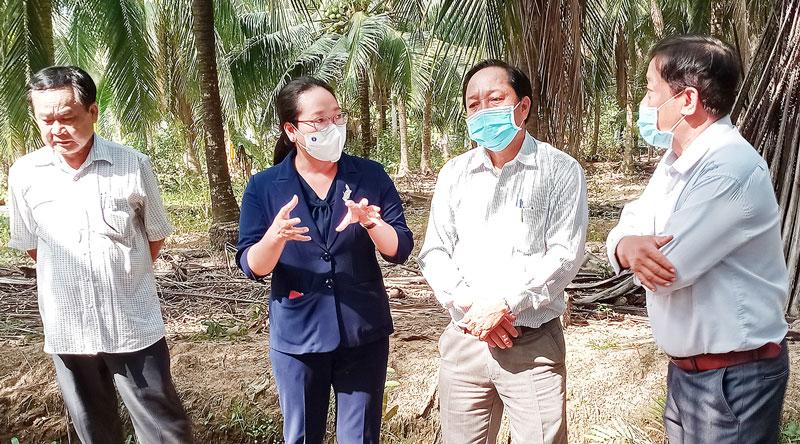Bí thư Huyện ủy Nguyễn Thị Hồng Nhung trao đổi với lãnh đạo UBND tỉnh về các giải pháp phòng trừ sâu đầu đen hại dừa.