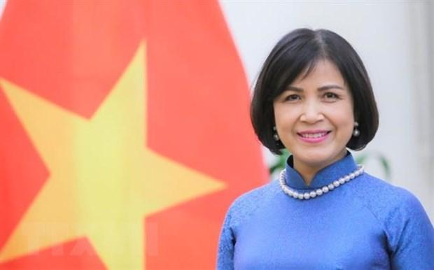 Đại sứ Lê Thị Tuyết Mai, Trưởng Phái đoàn Việt Nam tại Geneva làm Trưởng đoàn đàm phán. Ảnh: Tố Uyên/TTXVN