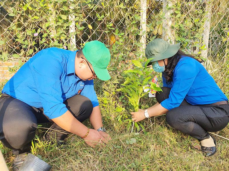 Đoàn viên, thanh niên Huyện Đoàn Mỏ Cày Bắc trồng cây xanh trên các tuyến đường giao thông nông thôn trong Tháng Thanh niên 2021.