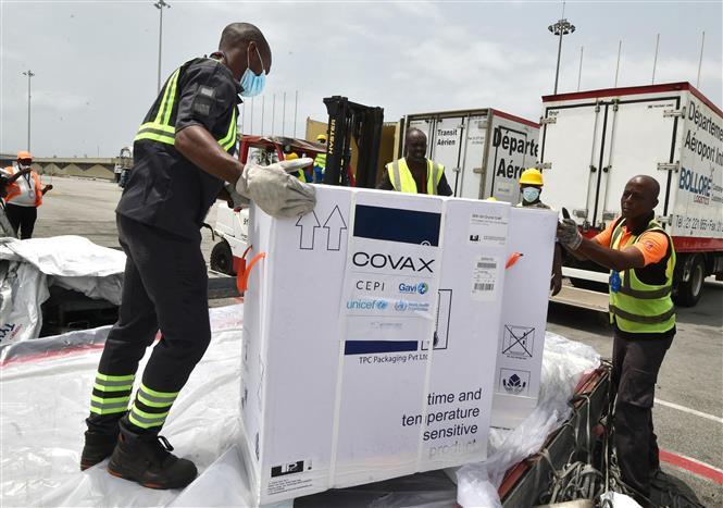 Nhân viên bốc dỡ các thùng vaccine ngừa COVID-19 của Hãng AstraZeneca/Oxford, được viện trợ theo chương trình vaccine Covax toàn cầu, tại Abidjan, Ivory Coast ngày 26-2-2021. Ảnh: AFP/TTXVN