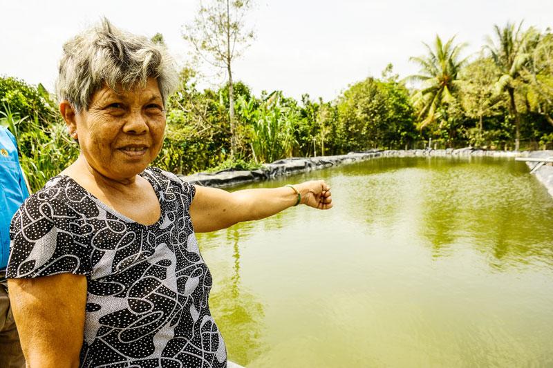 Bà Đỗ Thị Chua chi khoảng 50 triệu đồng để đầu tư 1 bể 500m2, sâu 4m trữ nước ngọt tưới cho gốc mai vàng.