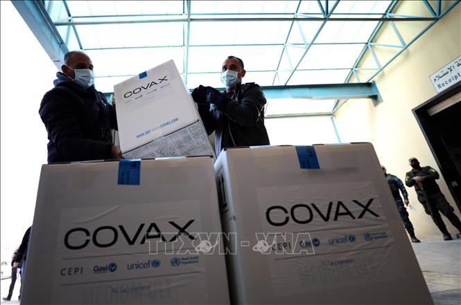 Vaccine ngừa COVID-19 được phân phối theo cơ chế COVAX tại làng Salem, phía đông thành phố Nablus, Bờ Tây, ngày 17-3-2021. Ảnh: THX/TTXVN