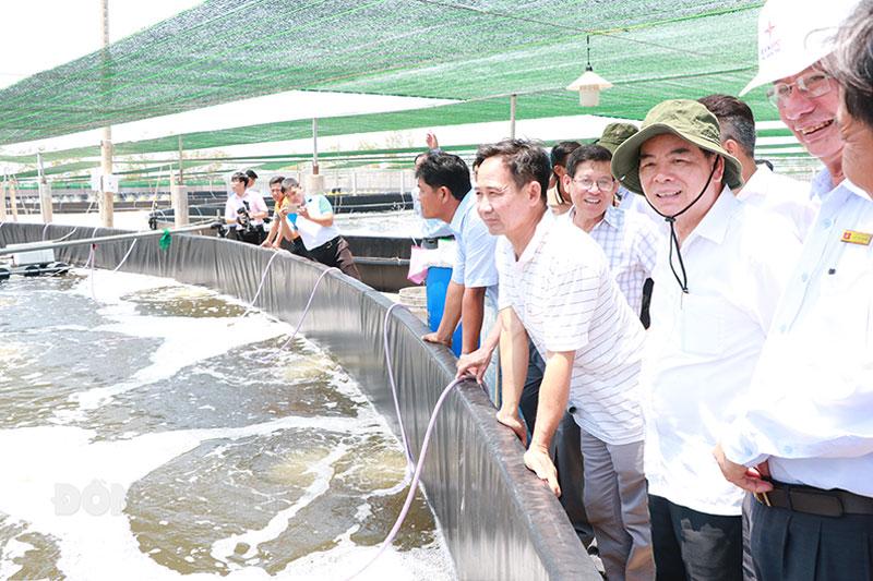 Chủ tịch UBND tỉnh Trần Ngọc Tam (thứ hai từ phải sang) khảo sát mô hìnhnuôi tôm công nghệ cao tại huyện Thạnh Phú.