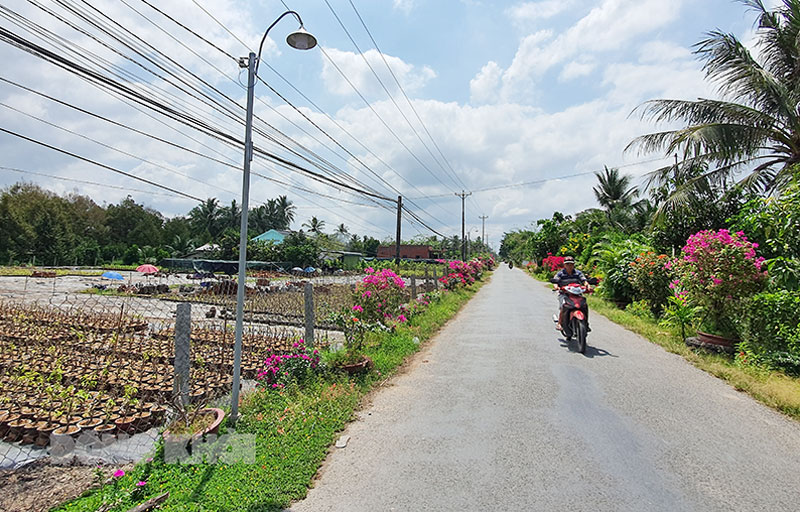 Tuyến đường huyện lộ 41 qua xã Tân Thiềng được lắp đèn led dựa vào nguồn lực do nhân dân đóng góp.