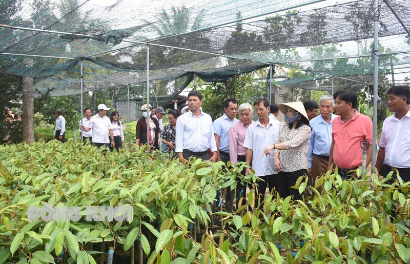 Tham quan các mô hình sản xuất của thành viên Câu lạc bộ Nông dân tỷ phú huyện Chợ Lách.