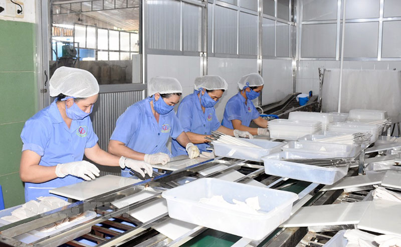 Sản xuất ống hút dừa của Công ty TNHH Chế biến sản phẩm dừa Cửu Long.