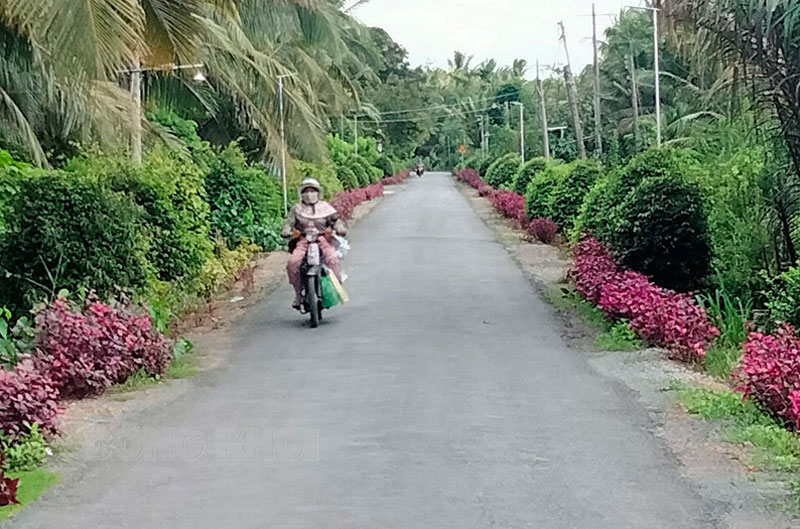 Diện mạo nông thôn mới xã Thạnh Phú Đông (Giồng Trôm).