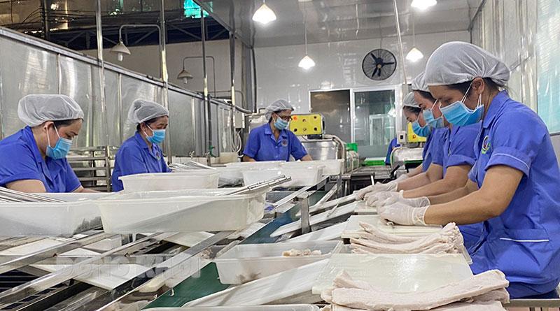 Công ty TNHH Chế biến sản phẩm dừa Cửu Long sản xuất ống hút dừa xuất khẩu.