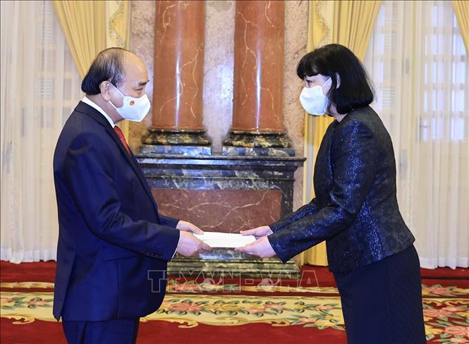 Chủ tịch nước Nguyễn Xuân Phúc tiếp Đại sứ Romania, bà Cristiana Romila. Ảnh: TTXVN