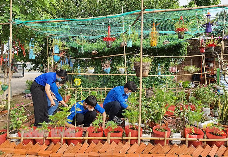 Đoàn viên, thanh niên chiết và trồng cây cảnh để hỗ trợ xây dựng các không gian xanh, sạch, năng động.