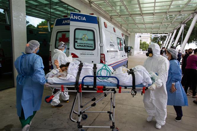 Nhân viên y tế điều trị chuyển bệnh nhân nhiễm COVID-19 tới bệnh viện ở Manaus, Brazil. Ảnh: AFP/TTXVN
