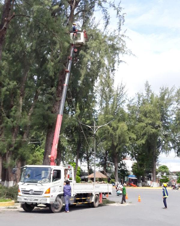 Cắt tỉa cây xanh đảm bảo an toàn giao thông trong mùa mưa bão. Ảnh: Hữu Hiệp