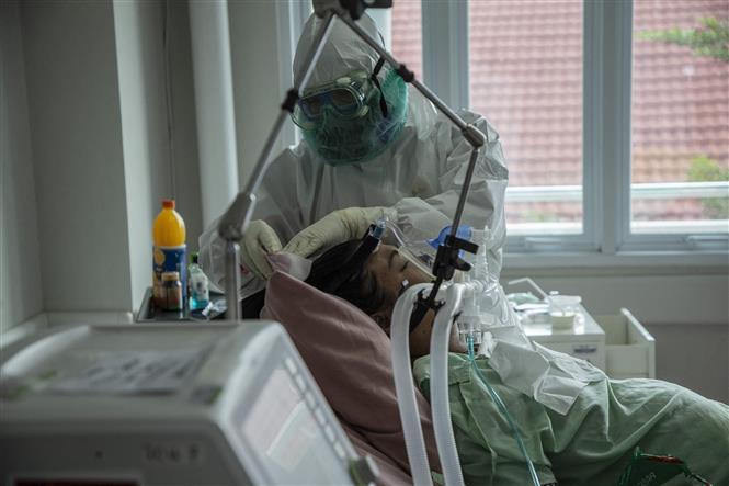 Nhân viên y tế điều trị cho bệnh nhân COVID-19 tại bệnh viện ở Bogor, Indonesia. Ảnh: AFP/ TTXVN