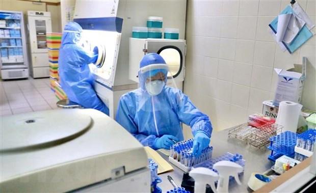 Nữ kỹ thuật viên Bệnh viện Trung ương Huế tham gia công tác xét nghiệm COVID-19. Ảnh: TTXVN phát