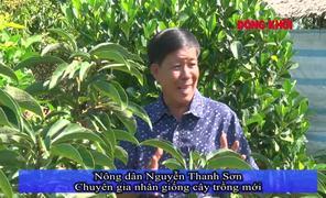 Nông dân Nguyễn Thanh Sơn chuyên nhân giống cây trồng mới