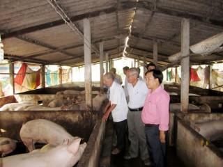 Gia đình cụ Nguyễn Văn Quới làm kinh tế giỏi