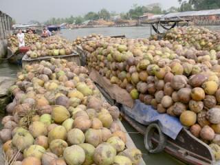 Kinh tế nông nghiệp toàn diện tiếp tục phát triển