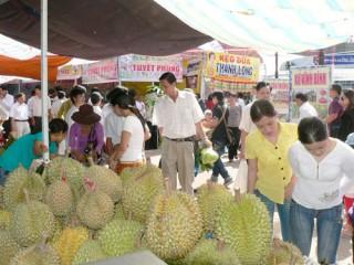 Mô hình trồng sầu riêng đạt hiệu quả kinh tế cao