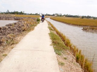 Thạnh Phú: Gắn phát triển giao thông với xây dựng hạ tầng nông thôn