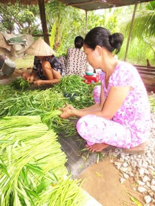 Có một mô hình phụ nữ giúp nhau thoát nghèo