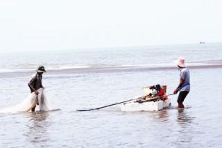 Khôi phục lại HTX Thủy sản Đồng Tâm