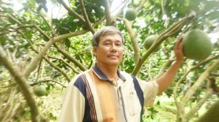 Cựu chiến binh Mai Ngọc Hải vượt khó, thoát nghèo bền vững