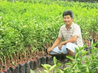 Nông dân khẩn trương với mùa cây giống