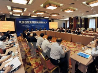 Lào đăng cai Diễn đàn Doanh nghiệp trẻ ASEAN-Trung Quốc