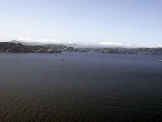 Nhật Bản đề nghị lãnh đạo Nga không thăm đảo tranh chấp