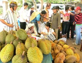 Xây dựng thương hiệu cho trái cây đặc sản