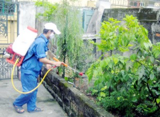 Công điện của Thủ tướng Chính phủ về việc tăng cường công tác phòng, chống sốt xuất huyết