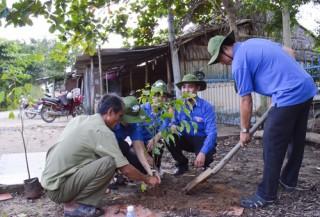 Trồng 800 cây phân tán tại các xã nông thôn mới