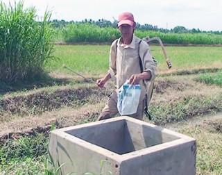 Khắc phục ô nhiễm môi trường trong sản xuất nông nghiệp