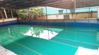 Tư nhân đầu tư 11 hồ bơi, bể bơi